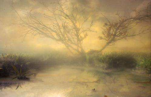 Kim Keever, Estuary 12, 2006