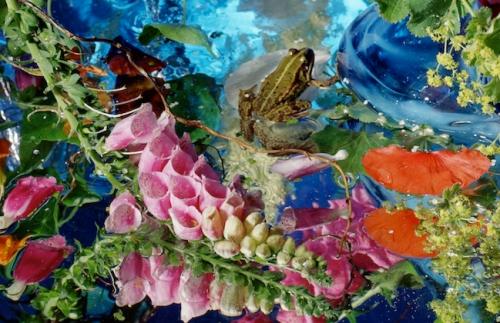 Margriet Smulders, Amor Omnia Vincit, détail, 2005, Cibachrome, 125 cm x 1100 cm.