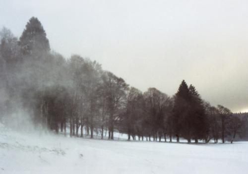 Le Pont, 2009, Sophie Brasey
