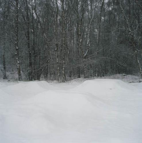 Anne Schwalbe, Unter dem Schnee, 2006