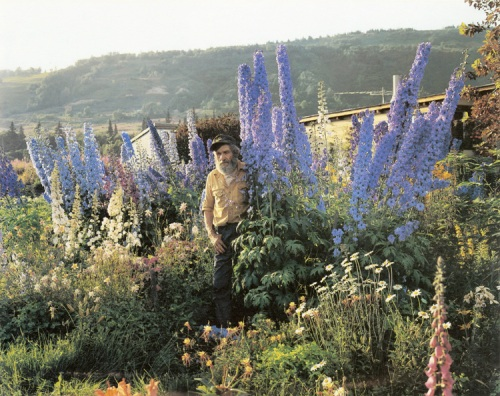 Joel Sternfeld, A Blind Man in his Garden, Homer, Alaska, July, 1984