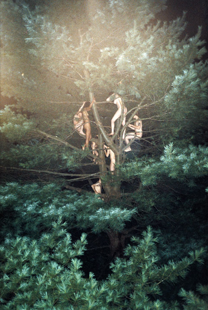 Ryan McGinley, Tree # 3, 2003